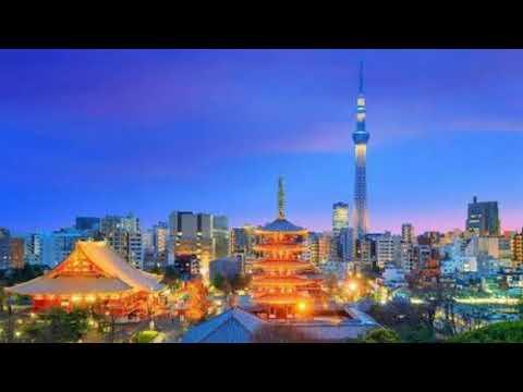 Tokyo Lights - Monkey Majik