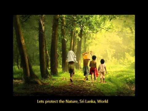 Kande Lande Gangulelle Pena Thek Mane by Rohana Beddage