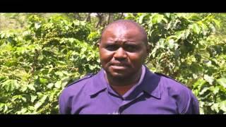 Smart Farm: Coffee Farming