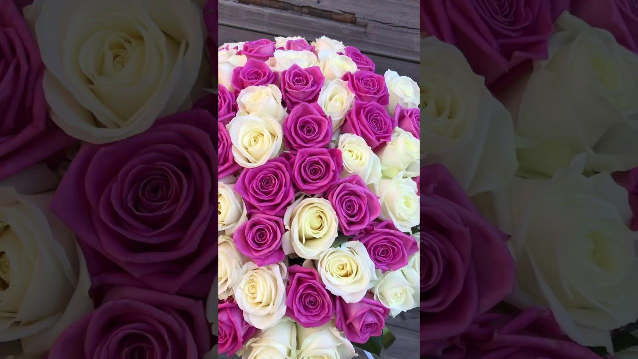 51 белая и розовая роза 50 см