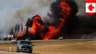 Canadian wildfire: Cooler weather helps firefighters contain Fort McMurray fire - TomoNews
