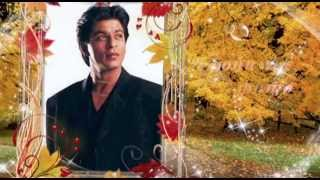 Осенние раздумья и цвета...   SRK