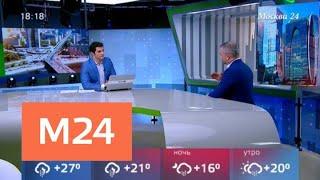 Смотреть видео Когда в Москве начнется осень - Москва 24 онлайн