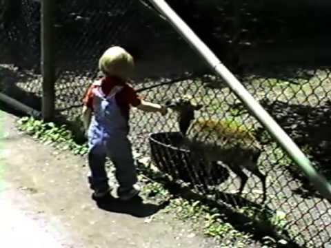 Catskill Game Farm - 1988