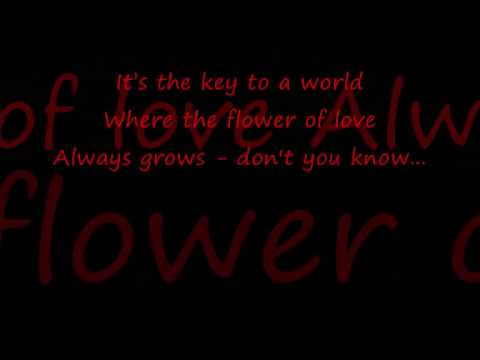 Music is the Key Sarah Connor with Lyrics