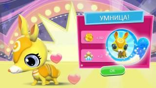 Littlest Pet Shop! Серия 39! Новые друзья! Игра Магазин домашних животных