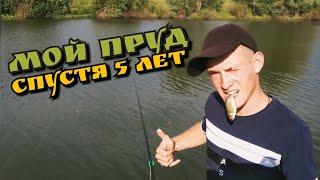 Рыбалка в своем пруду спустя 5 лет Что стало с прудом спустя 5 лет 1 Часть