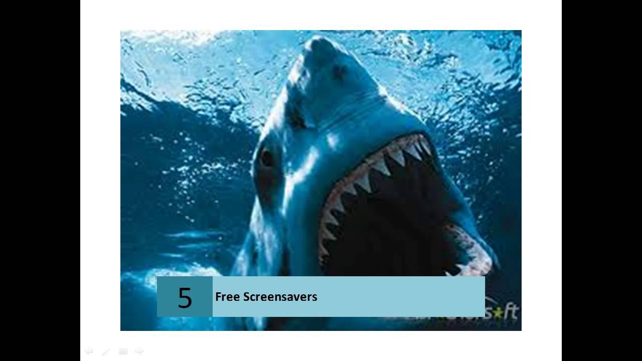 Top 10 Free Screensavers Downloads