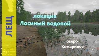 Русская рыбалка 4 - озеро Комариное - Лещ на пляже