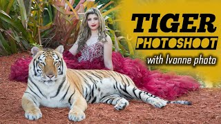 Tiger Photoshoot Miami