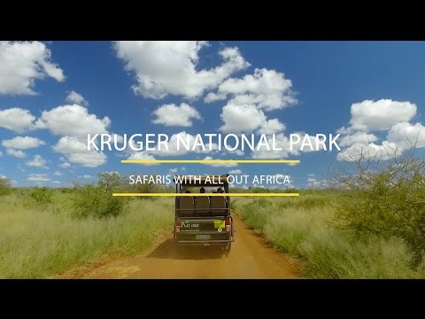 All Out Africa in Kruger National Park [Official Commercial]
