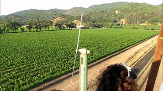 Napa Valley & California Wine Country Hot-Air Balloon Videos
