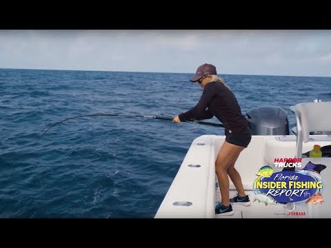Grouper - 2019 | Florida Insider Fishing Report - Season 15, Episode 10