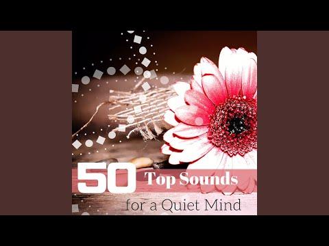 Top Tracks - Essence Reliford