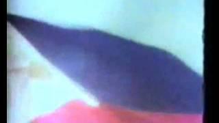 Lupang Hinirang (1980s) - Philippine National Anthem