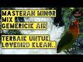 Masteran Lovebird Betina Konslet Minor Speed Santai Mix Gemericik Air Mengalir Mantap Bos  Mp3 - Mp4 Download