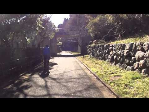 Countryside Cycling in Chiba
