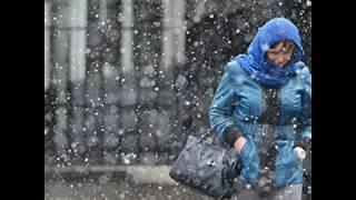 Первый снег , Рома Жуков