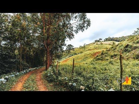 Clique e veja o vídeo Curso Construção de Cercas na Fazenda