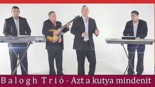 Balogh Trió-Dani-Azt a kutya mindenit Official ZGSTUDIO video