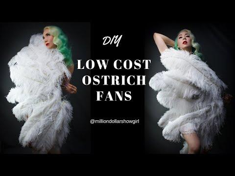 DIY Low cost  ostrich fan tutorial