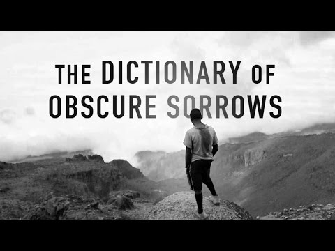 The Dictionary of Obscure Sorrows: For Lack Of A Better World