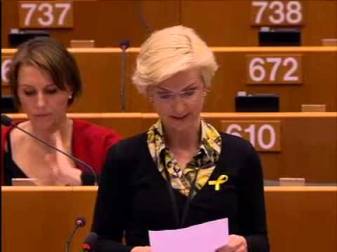 Ulla Tørnæs 25 Mar 2015 plenary speech on Compliance of the German provisions with European l