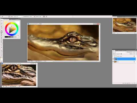 Alligator painting process