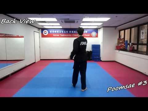 Taekwondo - Poomsae 3 (Sam Jang) Slow-motion & Mirror