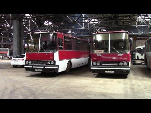 Обзор междугороднего автобуса Ikarus 250.59 люкс Тольятти