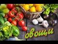 Названия овощей по-турецки. Sebzeler.