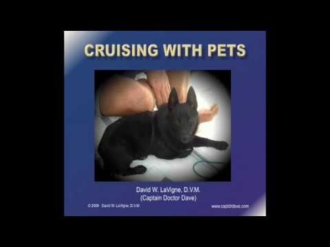 Cruising with Pets (Part 1)