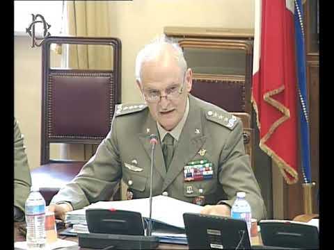 Roma -Audizione generale Del Casale (28.06.17)