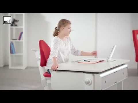 How To Set Up A Kids' Workstation - Moll Champion And Maximo