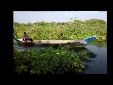 Surga buat para pemancing ikan air tawar (hobi mancing wajib lihat)