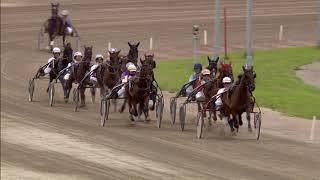 Vidéo de la course PMU PRIX D'ARJANG