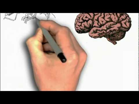 Neural Network Intro | Can We Write a Program Which acts like human brain?