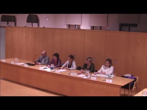 Consell Plenari del Districte de Ciutat Vella 19-10-2017