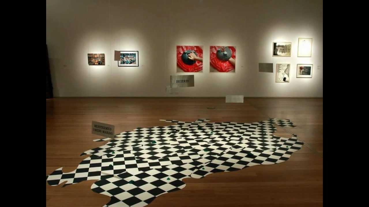 Malba moderno museo de arte latinoamericano buenos for Sillones modernos buenos aires