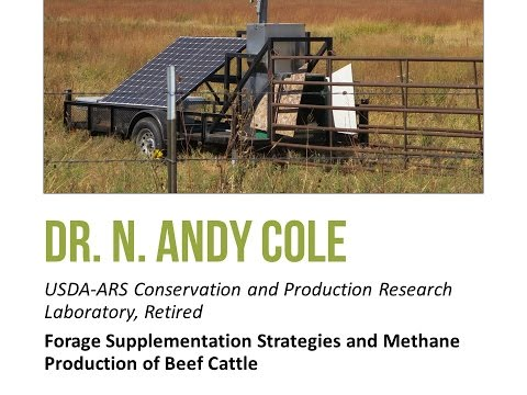 Supplementation Effects on Enteric Methane of Beef Cattle - Webinar by Dr. Andy Cole