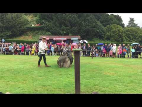 Full Birds of Prey show at Warwick Castle