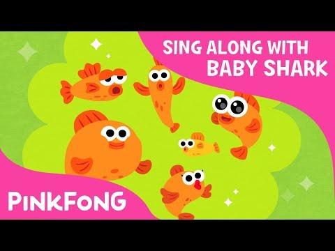 Six Little Fish | Sing Along with Baby Shark | Pinkfong Songs for Children