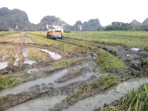Máy gặt Nhật chạy ruộng thụt Ninh Bình - haisonco.vn
