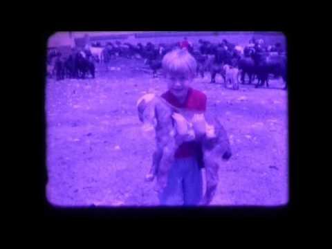 1970 Farm in Bekaa