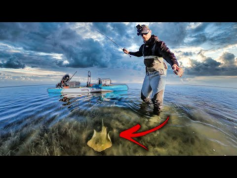 stung by stingray while wadefishing - WHAT YOU NEED TO KNOW