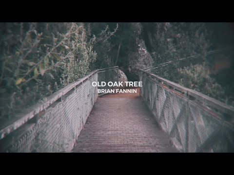 That Old Oak Tree - Brian Fannin // OFFICIAL Lyric Video