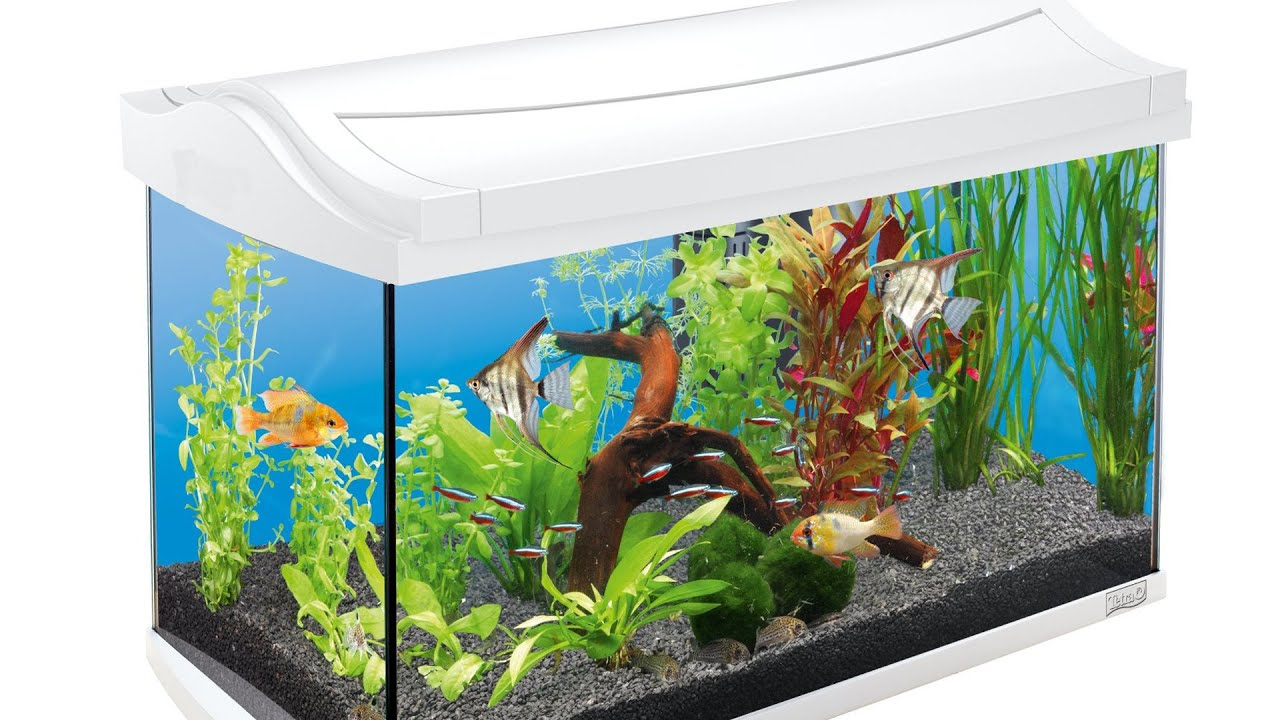 all pond solutions nano aquarium led beleuchtung prima. Black Bedroom Furniture Sets. Home Design Ideas
