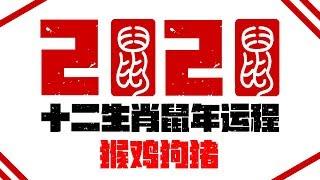 2020十二生肖庚子鼠年运程运势 | 猴鸡狗猪运程 | 新加坡马来西亚香港台湾华人必看 |最好的生肖 | Ahmiao Tv