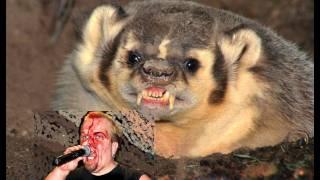 Gordon Ramsay dwarf porn lookalike eaten by badgers - ULTIMATE TFU Friday