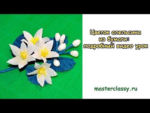 DIY. Paper flowers tutorial. Цветок апельсина из бумаги: подробный видео урок